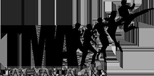 Team Martial Arts Logo